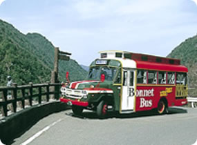 A6.Tourist Bonnet Bus (around lya Area)
